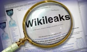 wikileaksloupe