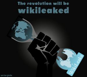 wikileaks e pugno